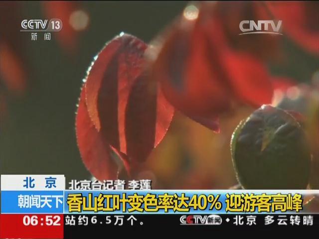 北京:香山红叶变色率达40% 迎游客高峰
