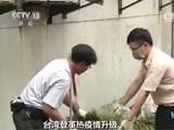 台湾登革热疫情升级:入夏后疑似死亡病例已达31例