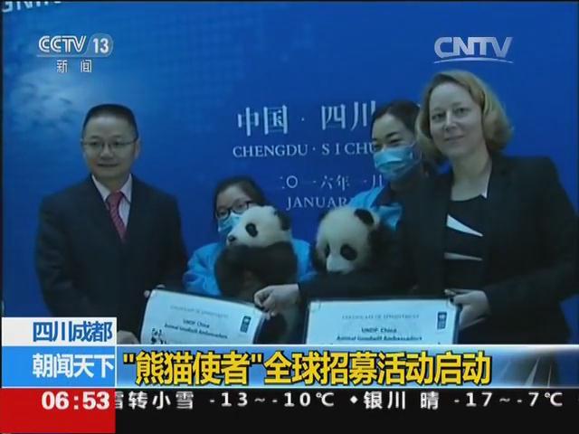 """四川成都:""""熊猫使者""""全球招募活动启动"""