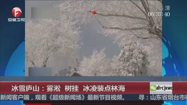 实拍雪后庐山风景 雾凇树挂冰凌装点林海美如画卷