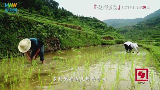 """海外网&CCTV""""记住乡愁""""MV——《记住乡愁》"""