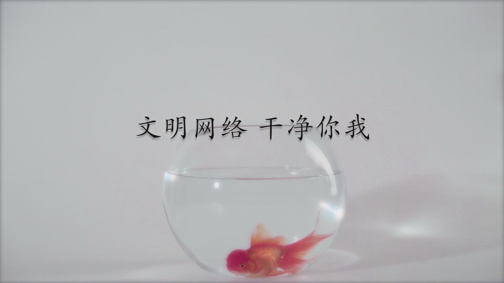 台州:中国智能马桶产业之都