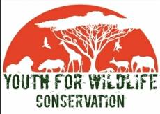全球动植物保护,义不容辞