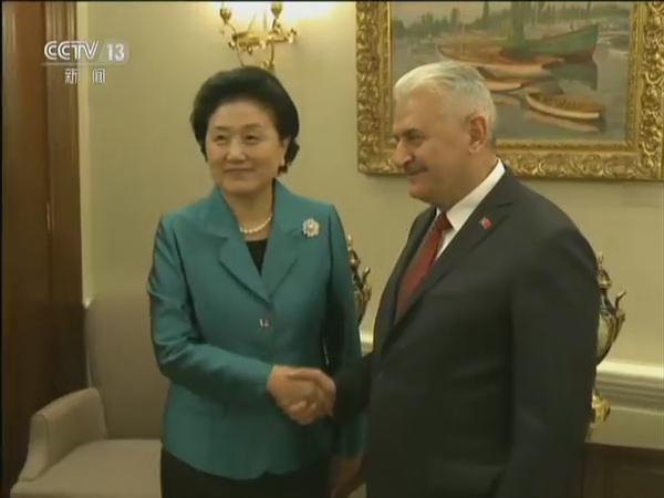 土耳其总统和总理会见刘延东