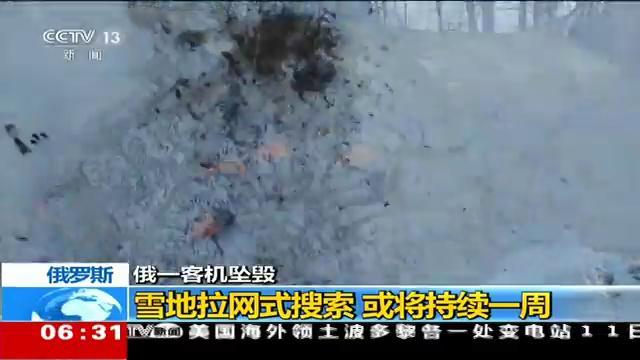 初步调查显示俄客机坠毁前未爆炸